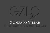 logo Gonzalo villar widget